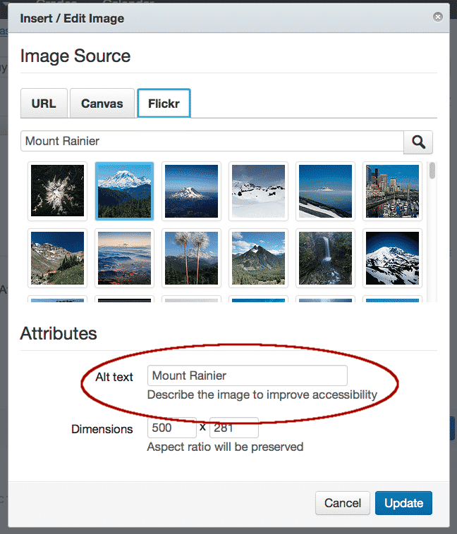 Provide useful texts for both your images and non-text elements